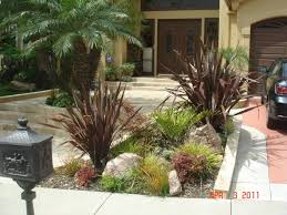 modern drought tolerant landscaping with concrete walkway and