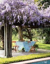 Trellis For Wisteria Best 25 Wisteria Arbor Ideas On Pinterest Arbors Garden Arbor