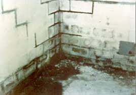 fixing wet basements u2013 b dry waterproofing system