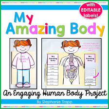 human body project for kids primary theme park