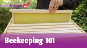great instructional video for setting up your first bee colony
