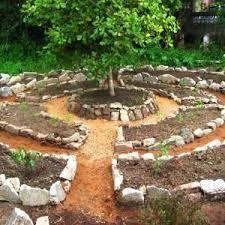 home vegetable garden ideas india inspirational vegetable garden