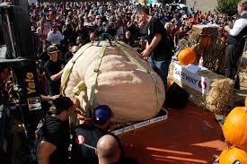 safeway world championship pumpkin weigh off 2015 youtube