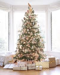 all about trees guide decoratingbecki owens