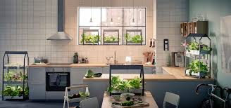 Indoor Herb Garden Kit Australia - ikea is now selling hydroponic gardening kits business insider