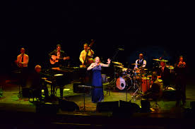 pink martini hang on little tomato pink martini sells out bucharest stop business review