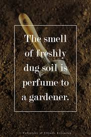 Buy Soil For Vegetable Garden by The Smell Of Freshly Dug Soil Is Perfume To A Gardener Quote