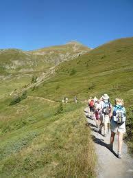 bernese oberland u0026 lake lucerne walking tour