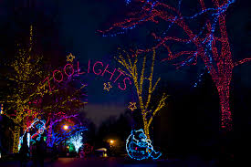Lights At The Zoo by Christmas In Washington D C Touringplans Com Blog
