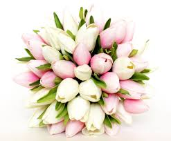 tulip bouquets wedding bouquet tulip pink wedding bouquet pink and white