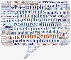 roles and responsibilities in a best practice performance