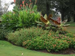 66 best mass that images on garden ideas