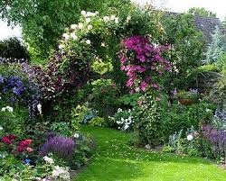 1464 best flower garden pictures images on pinterest plants