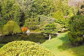 san francisco native plants garden food art u0026 culture
