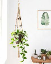 indoor hanging basket ebay