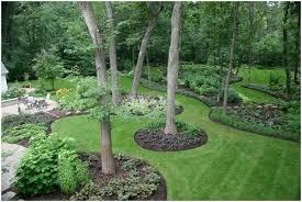 Small Backyard Landscaping Ideas Arizona by Backyards Bright 25 Best Arizona Backyard Ideas On Pinterest