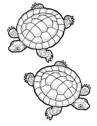 Téléchargez ou imprimez cette incroyable coloriage Coloriage tortue