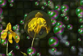 wallpaper bunga lingkaran wallpaper bunga bunga hijau lingkaran bola seni daun bunga