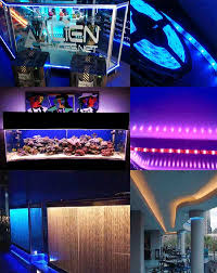 Exterior Led Strip Lighting Led Strip Lights Under Cabinet Lights U0026 Wall Strip Lights