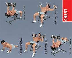 Dumbbell Exercises On Bench Dumbbell Chest Exercises Best Diets And Exercises Pinterest