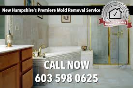 mold removal and mildew removal new hampshire mold removal new