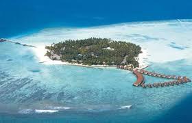Recensioni Bravo Alimatha by Bravo Alimatha U0027 Atollo Di Vaavu Maldive