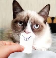 Unhappy Cat Meme - remix remix csp 3 29 2 pt clicker game app lab