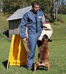 Dog Blinds Dog Sport Search Blinds