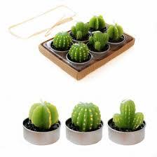 cactus home decor rare simulation plant candle mini cactus candles home decor table