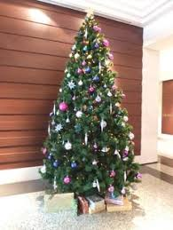 Christmas Decorations Tree Singapore by Pin By Candy Floriculture On Christmas Decorations Around