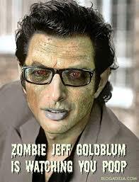 Jeff Goldblum Meme - image 26165 jeff goldblum is watching you poop know your meme