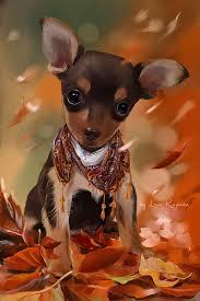 halloween cat background deviantart 267 best kajenna images on pinterest dog art animals and