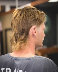 cool mullet hairstyles for guys mullet haircuts party in the back business in the front