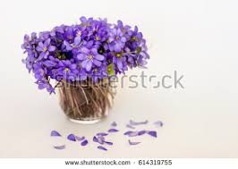 Small Glass Vase Glass Vase Stock Images Royalty Free Images U0026 Vectors Shutterstock