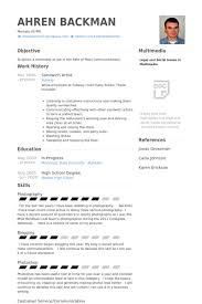 download artist resume sample haadyaooverbayresort com