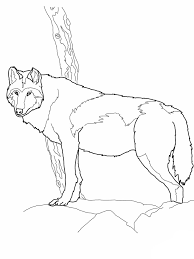 coloring pages of animals in their habitats wolf template animal templates free u0026 premium templates