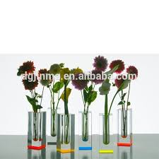 Display Vase Fashional 50cm Insert Acrylic Silver Tall Acrylic Vases Vase Stand