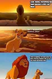 Fall Memes - look simba everything the light touches is bcc fall river