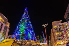 christmas trees and lights christmas at national harbor 2017