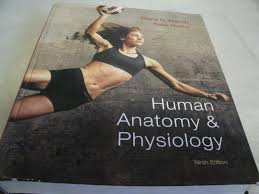 human anatomy and physiology marieb 9th edition pdf download free