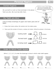 dental hygiene worksheets free worksheets library download and
