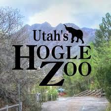 houston zoo lights coupon todaysmama com hogle zoo coupons