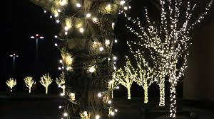 led christmas lights difference between retail and pro grade