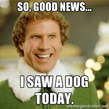Good News Meme - so good news i saw a dog today great elf quote and true