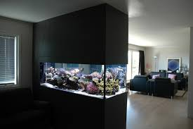partition room with aquarium design image photos pictures