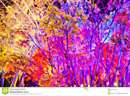color tree stock photo image of blue celebration abstract 36149410