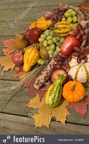 harvest cornucopia cornucopia with fall harvest photo