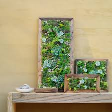 Garden Containers Large - wondrous living wall garden project vancouver herb wall living