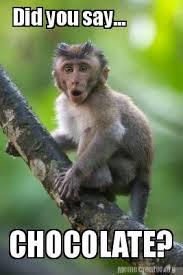 Monkey Meme - meme creator surprised monkey meme generator at memecreator org