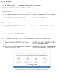 seed germination worksheet pictures to pin on pinterest pinsdaddy